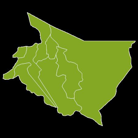 Casas Cartago