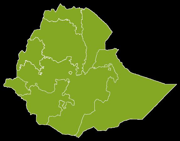 Property Ethiopia
