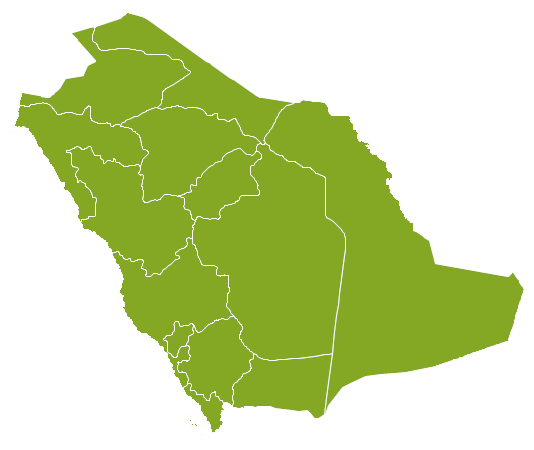 Property Saudi Arabia