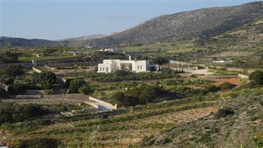 Ökologisches Haus mit Meerblick über Aliki im südlichen Paros