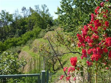 Agriturismo La Spezia - 5 Terre