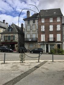 Povijesna gradska kuća Pleaux