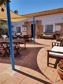 Prostrani andaluzijski kortij s velikim privatnim bazenom okružen narančastim šumarcima