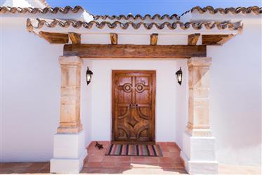 Spacious Mediterranean Villa with boosting sea views