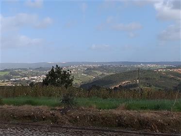 Terreno com viabilidade de construção e vistas desafogadas Carvalhal Benfeito