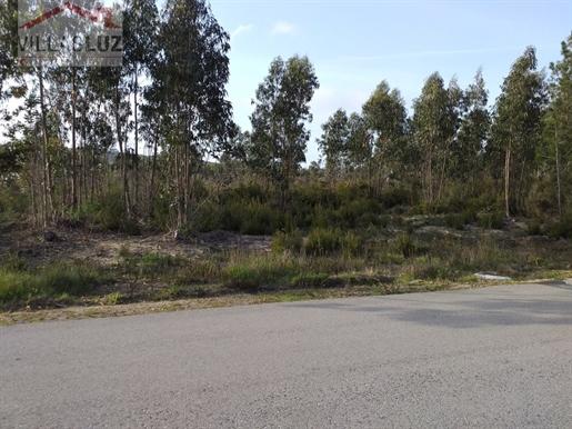 Terreno rústico em zona urbana perto de São Martinho do Porto