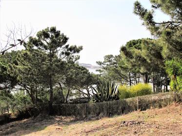 Baugrundstück mit Blick auf die Lagune von Obidos.