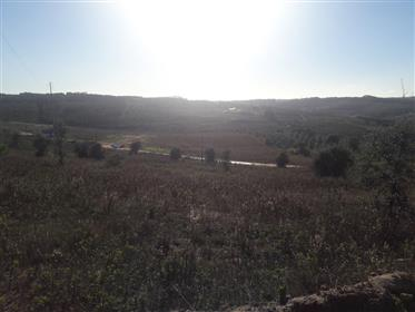 Terrain à bâtir avec vue panoramique de 4,5 hectare