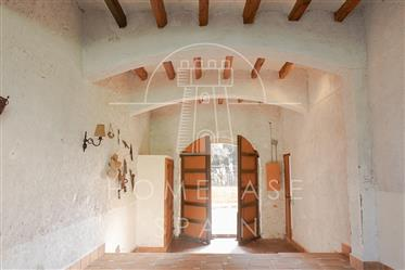 Charming village house with two gardens and lots of light!
