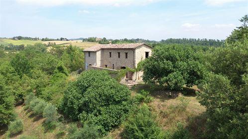 San Pietro - Ipn Castello