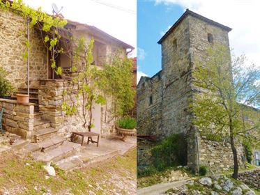 Ancient tower and restored cottage in Tuscany - Ipn Castello