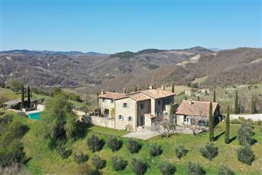 Bella Vista Carpini