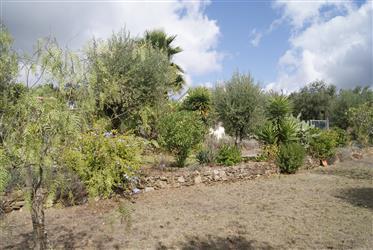 Maison de rêve à vendre avec piscine et beau jardin
