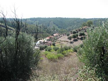 Terreno: 1440 m²