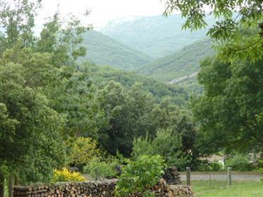 Vignevieille constructible land for a house