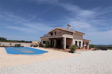 Very nice villa next to Pinoso for sale