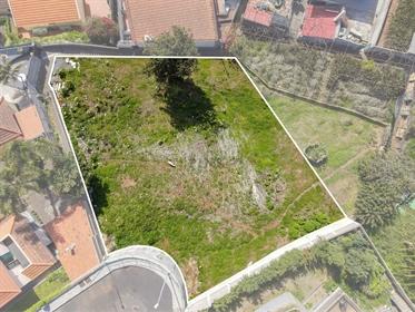 Parcela De Tierra C/ 922M2 - Funchal - Vista Baía!