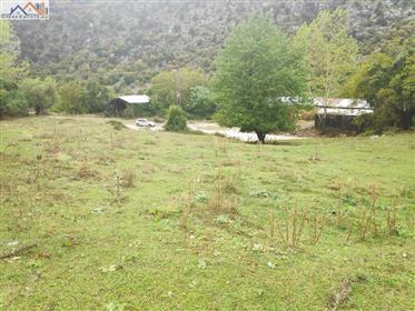 Terreno: 1.412 m²