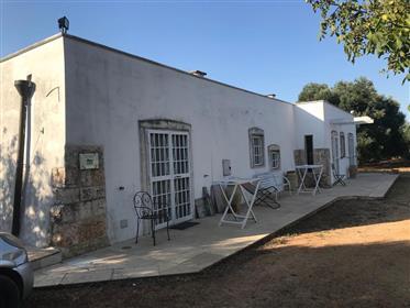 Vendesi bel complesso immobiliare composto da un casale in stile liberty e trulli