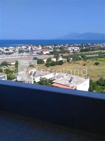 Property for sale(Chalcis)