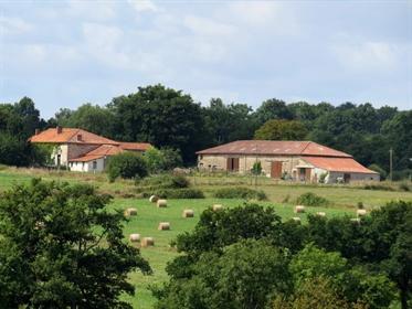 Casa : 520 m²