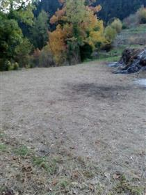Terreno: 5029 m²