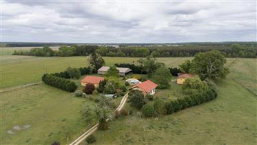 On more than 5 ha, equestrian property for sale in the Landes