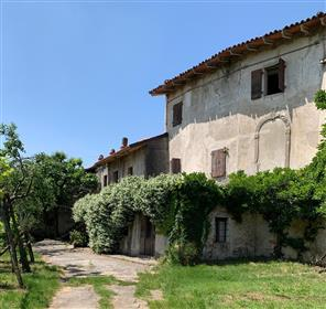 Ancient Rustic For Sale With Plenty Of Promise
