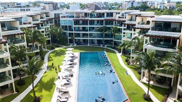 Apartamento: 150 m²