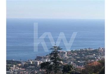 Terrain on The Mount | Funchal