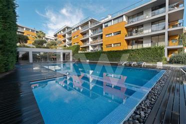 Se procura um apartamento no coracao da cidade do Funchal, e...