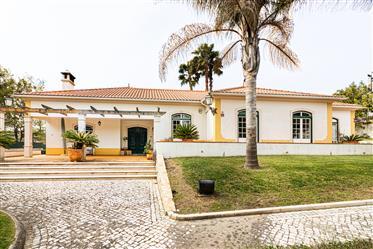 Luxuryt4 - Tomar - MainStreet House