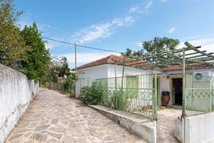 (Προς Πώληση) Κατοικία Μονοκατοικία || Ν. Μαγνησίας/Πήλιο-Τρ...