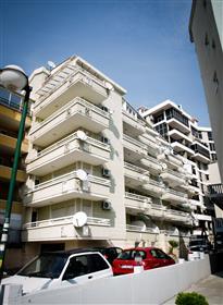 Wohnung: 40 m²