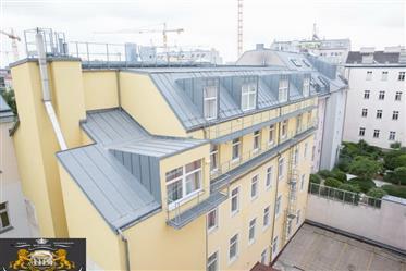 Schöne Wohnung im Zentrum von Wien