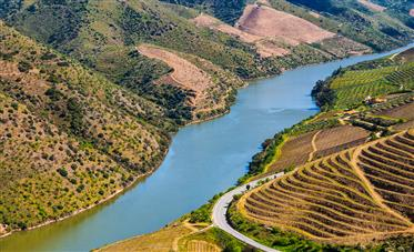 Hotel and Vineyard for sale, Douro Valley