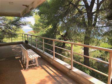 Halkidiki - Vourvourou Villa surrounded of greenery  near the sea!!!
