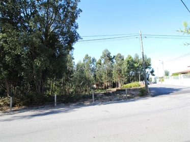 Land for sale in Olival (next to the Olival Social Center)