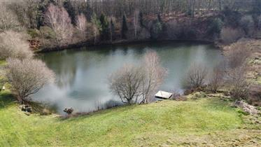 Gorgeous fully renovated stone farmhouse, with gite, small fishing lake and 6.3