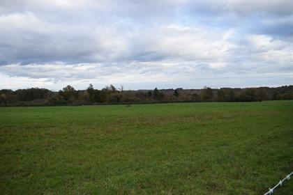 Terreno: 1.134 m²