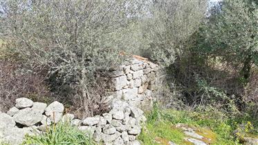 Stazzu nei pressi di Sant'Antonio di Gallura