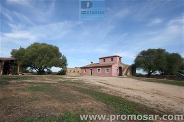 Casale tipico  in Sardegna