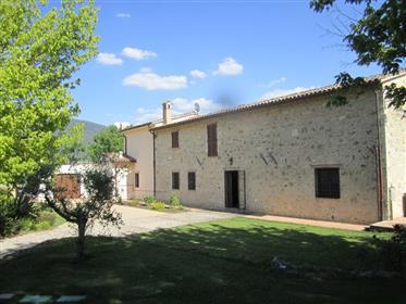 Maison : 300 m²