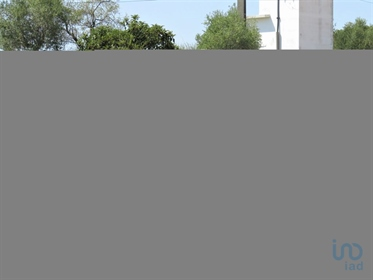 Mixed Land For Sale, In The Parish Of Madalena And Beselga, In TOMAR   Mixed terrain, f