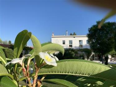 Villa with pool in South Sardinia