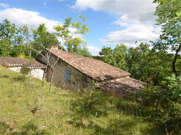 Propriété authentique du Quercy à rénover mais habitable, située en campagne sur 1 Ha de bois.