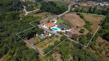 Quinta em Pombal | Zona centro de Portugal | 40 km de Fátima | Fácil acesso autoestrada A1
