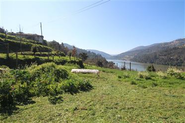Quinta com vista para o Rio Douro - Castelo de Paiva