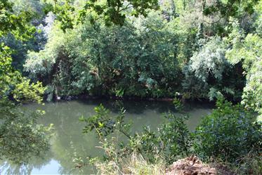 Boerderij met rio voorzijde - Cinfães