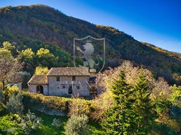 Rustico/Casale/Corte di 410 m2 a Greve in Chianti
